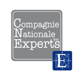 Compagnie Nationale des Experts copie